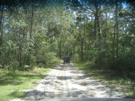 4WD in bush on Bribie Island