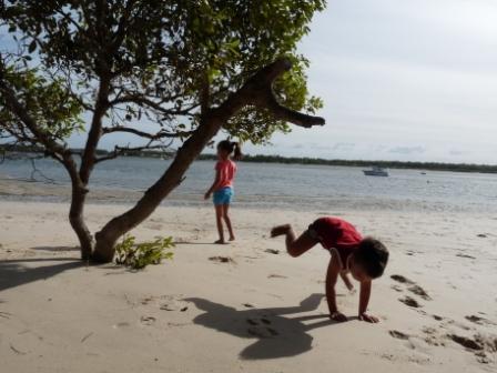 Beach on Bribie-Island.