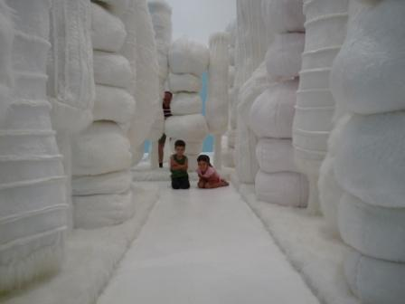 My Monument: White Forest 2008 - Kathy Temin (Australia)
