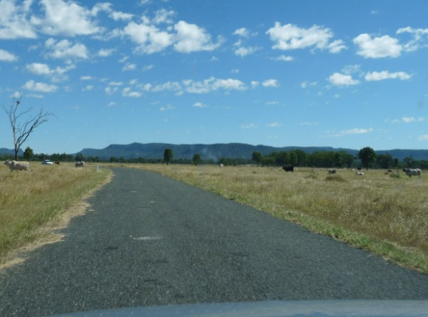 Road to Blackdown Tablelands National park.