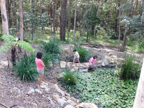 Still discovering animals around the frog pond.