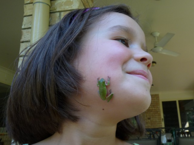 Kissed by a Wallum Sedge Frog.
